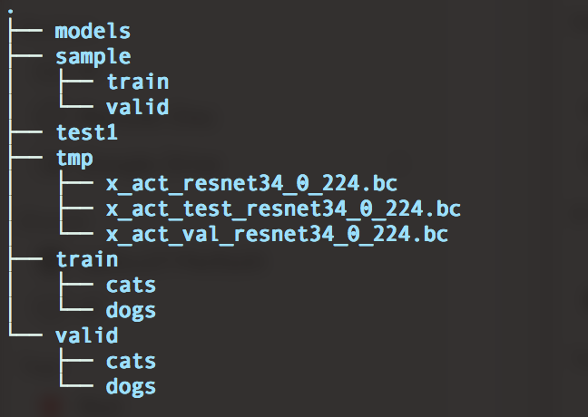Directory tree struture for the catsdogs dataset